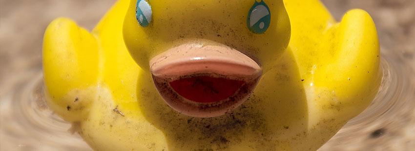 juguete de plástico pato amarillo